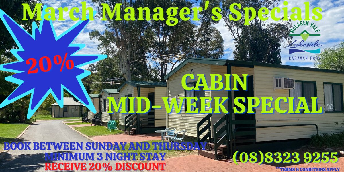 March Cabin Special Website (2)